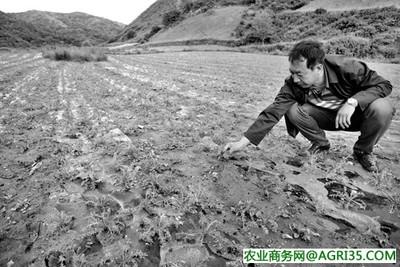 山西设立静乐现代农业产业示范区