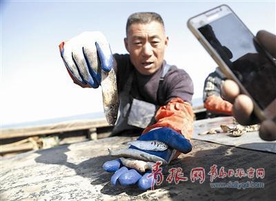 山东胶州365天守护渔民安全