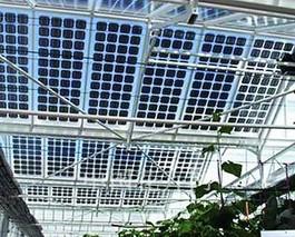 太阳能技术在温室中的应用与发展趋势