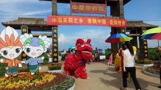第二届世界茉莉花大会、2020年中国(横县)茉莉花文化节在广西南宁开幕