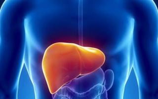 中度脂肪肝的治疗方法