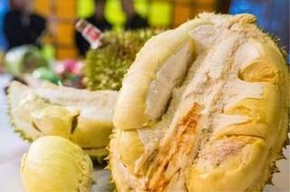 马来西亚拟加大榴莲对华出口