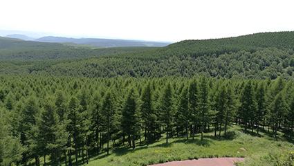 河北热议塞罕坝机械林场生态文明建设范例意义