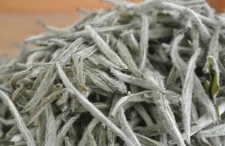 白牡丹茶叶的加工方法