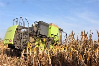 公主岭:推广玉米机械粒收技术