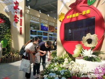 新疆团携50多个花卉品种亮相花博会