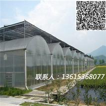 如何使用连栋薄膜大棚温室更节能