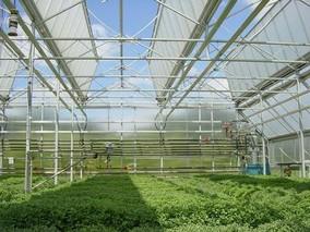 现代化温室应具备的基本功能