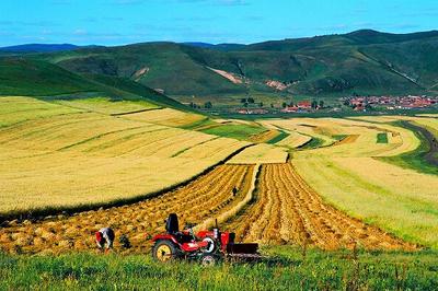 """蚌埠:实施永久基本农田特殊保护坚决遏制耕地""""非农化"""""""