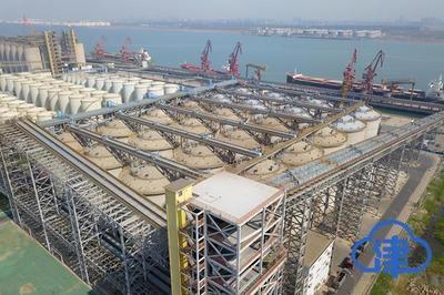 北方******粮油食品加工基地建成投用首批4.8万吨粮食进仓任务完成