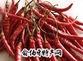 新安镇辣椒