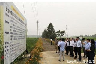 金华:农药化肥减量增效