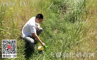 又有21个城市表示将禁止使用草甘膦