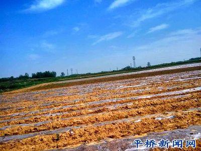 上饶市多措并举抓好春耕备耕及春季农业生产工作