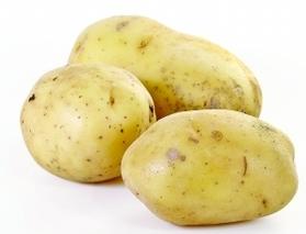 这个冬春哈市储菜8850吨 以大白菜、土豆等为主