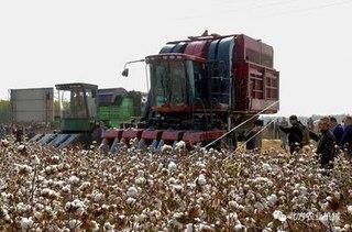 河北南宫:棉花生产实现全程机械化