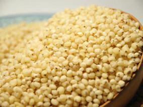 高粱米糠的功效与作用
