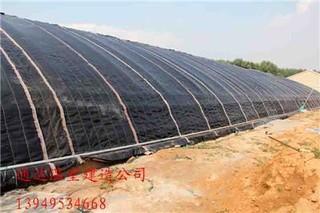 提高日光温室保温性能的新方法