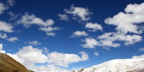 青海省牦牛藏羊原产地可追溯工程加快推进