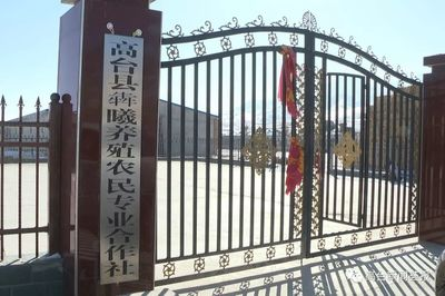 高台县颁发全省首批农村集体经济组织登记证书