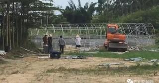 福建漳州市东山县陈城镇:拆除牛蛙养殖场动真格