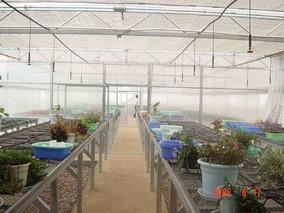 温室的精量施肥灌溉的系统