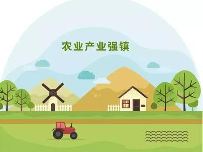 中央财政以奖代补支持300个农业产业强镇示范建设