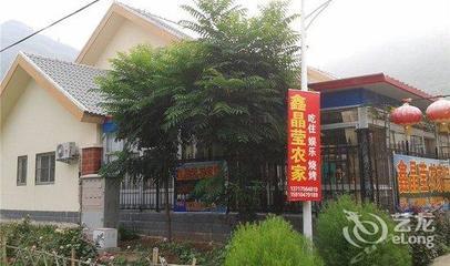 北京平谷大华山镇合力推进大桃销售,助力农民增收