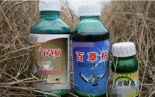 """江西开展含禁用农药""""百草枯""""专项整治行动"""