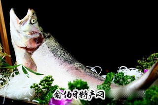新安江虹鳟鱼