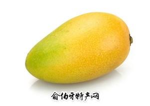 中晚熟芒果