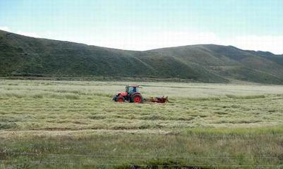 海北:重塑农牧业发展新模式