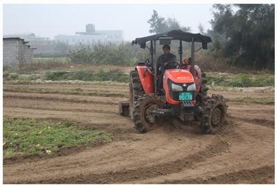 北仑区加大财政补贴力度推进粮食增产保供