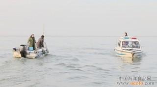 洪泽湖河蚬