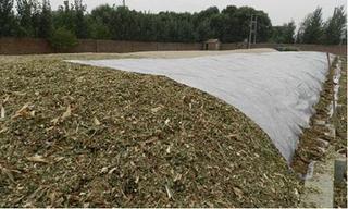 有机基质与堆肥的腐熟度的辨别方法