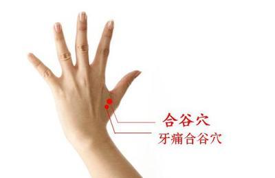 花椒治牙痛的介绍