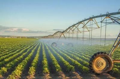 新型农业经营主体:政策支持力度仍待加强