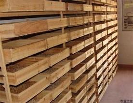 浙江衢州黄粉虫产品首次打入北美市场