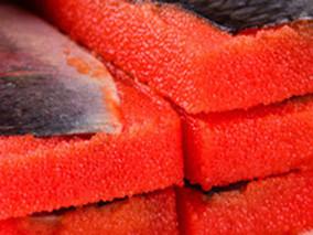 鲱鱼籽的功效与作用
