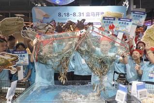 广州梭子蟹和皮皮虾降价一两成