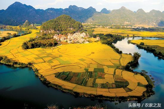 甘肃武威凉州区黄羊镇入选国家农业产业强镇示范建设