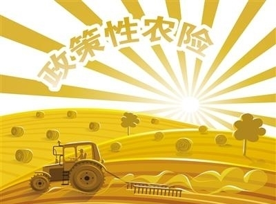 天津市财政支持农业保险成效显著