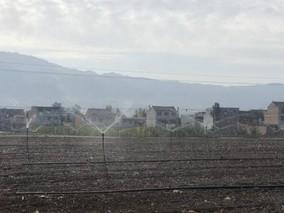 甘肃:旱作马铃薯绿色增产技术模式效果明显