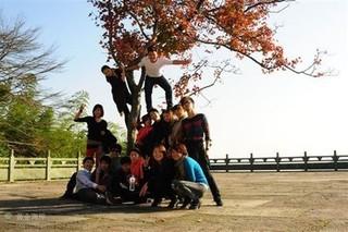 宁波市瓜类砧木育种创新团队硕果累累