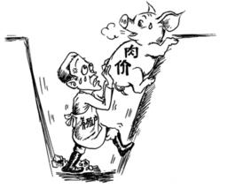 元旦后豆类市场行情走势分析