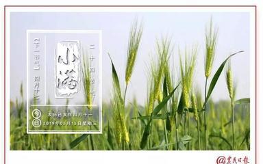 2019年中国和全球农业政策论坛举行