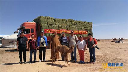 巴音前达门苏木为180户牧民发放90吨饲料
