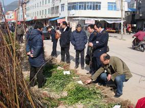 东阳市开展瓜类种子专项抽样检测