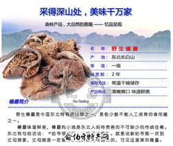 长白山野生榛蘑