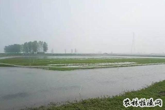 冬时节水产养殖塘口管理要做好哪些